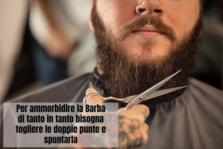 Per ammorbidire la barba bisogna tagliare le doppie punte e spuntarla